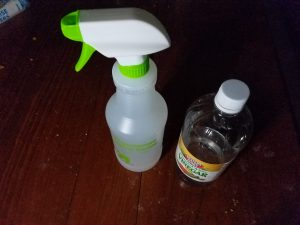 Water/Vinegar Cleans Cat Urine